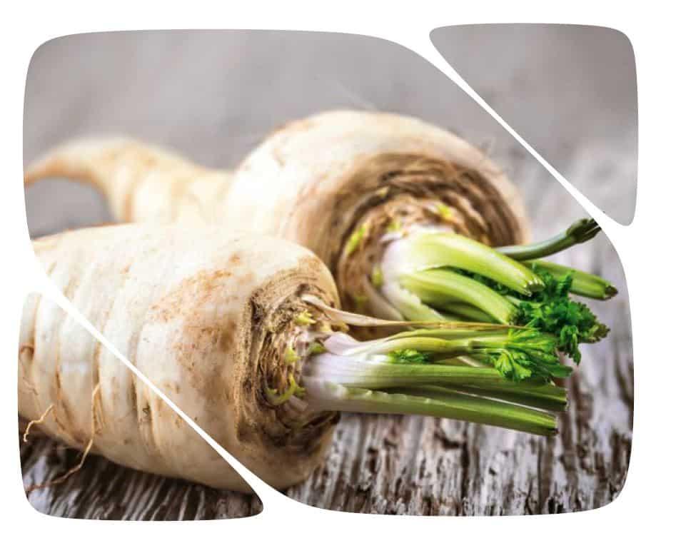 Biofach 2018 – into organic